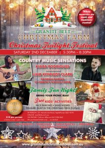Christmas Twilight Festival