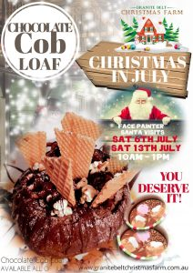 Christmas in July2019Web