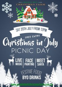 Christmas in July Picnic Day 2019 Web